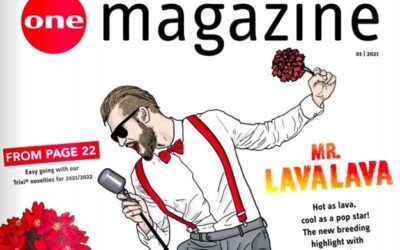 Selecta One magazin